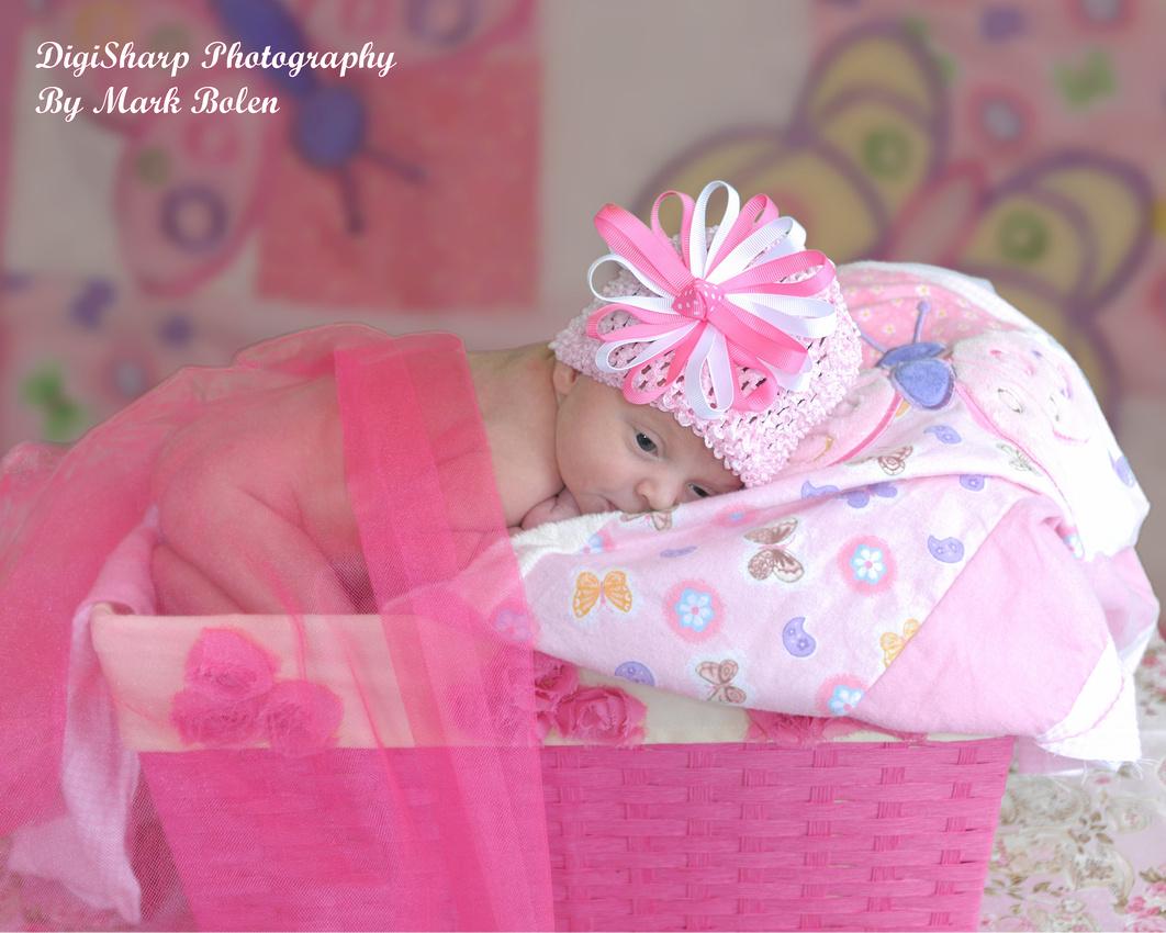 Newborn Portrait Photography near Fenton MI
