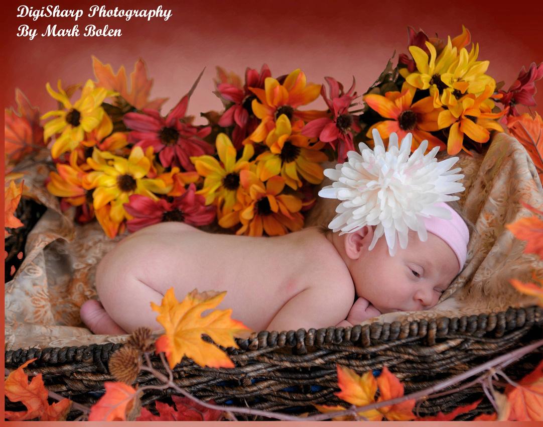 Newborn Portrait Photography near Hartland MI